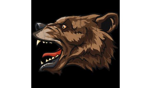 300_bear_head_ad3c88e2f6a77ba136faa0bf65