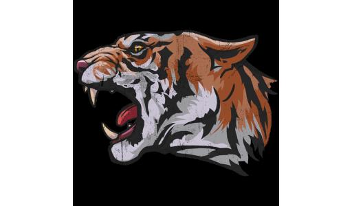 300_tiger_head_5ac6f0a698285d960babe7495