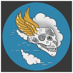 us_85_sqn_flying_skulls_250_7deece36a47b