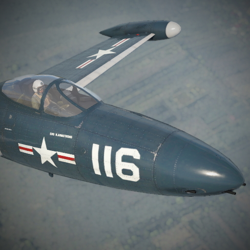 "Neil Armstrong's ""White 116"" camo for F9F2."