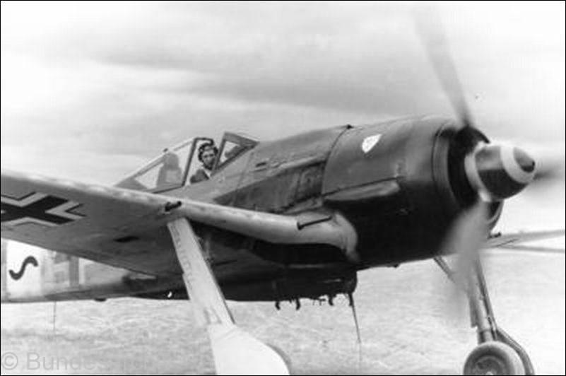 Le Fw 190 l'avion de référence de la Luftwaffe Fw190_1